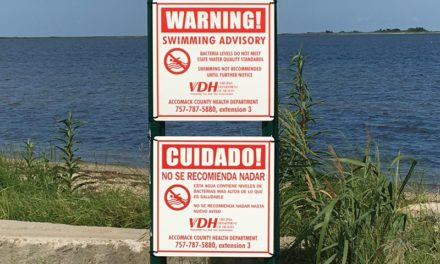 Guard Shore Swimming Ban Still in Effect