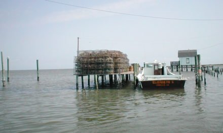 New Book about the Culture and the Future of Tangier Island Published