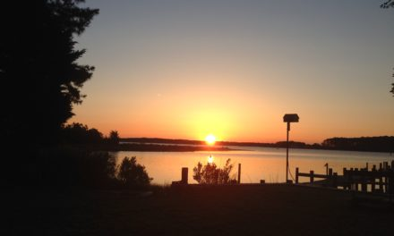 Eastern Shore Soil and Water Conservation District  Awards Local Community Members