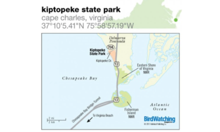 Kiptopeke State Park to Allow Muzzleloading Shotgun and Archery Hunts in December
