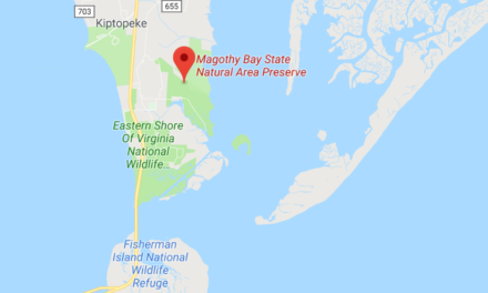100 Acres Added to Magotha Bay Natural Area Preserve