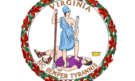 Virginia General Assembly Report
