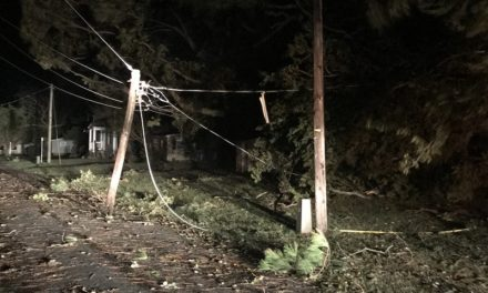 A&N Electric Cooperative receives $95k for Tropical Storm Michael cleanup