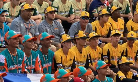 Sights and sounds of the Little League World Series