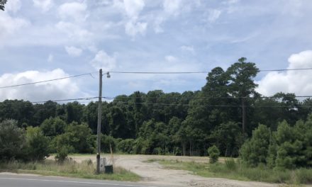 Whispering Pines real estate auctioned back to the County