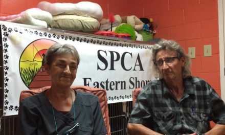 Shore Perspectives: The Eastern Shore SPCA