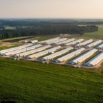 Delmarva's chicken industry grows more slowly than rest of U.S.