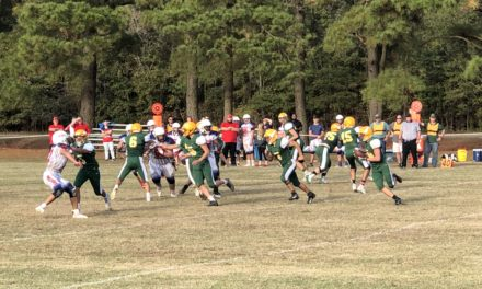 Broadwater falls at home to St. Michael
