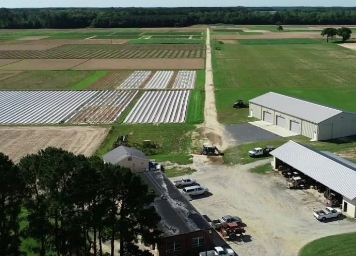 Painter Experiment Center receives two Specialty Crop Block Grants from Governor Northam