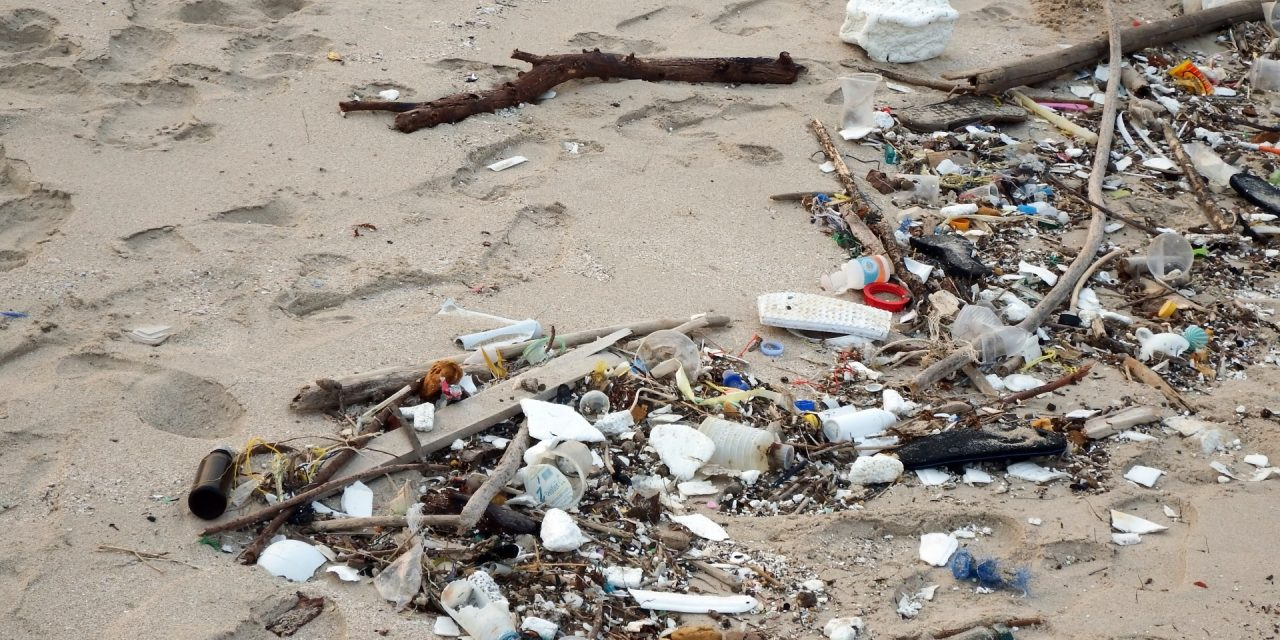 Litter items found on Virginia's beaches