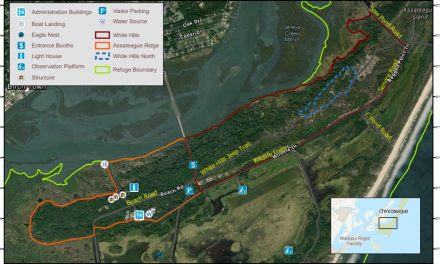 Chincoteague National Wildlife Refuge plans prescribed burn