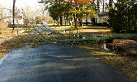 Rain and Wind causes some damage on the Shore