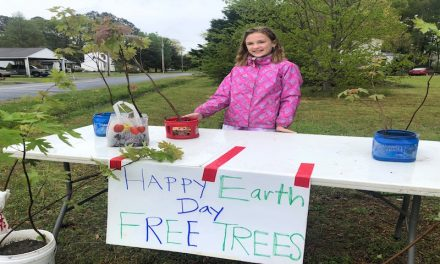 """In Exmore, a child with a different """"tree stand"""" for Earth Day"""