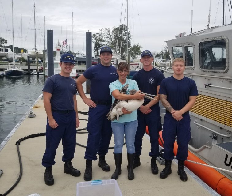 Conservation Officer and Coast Guard Rescue Pelican on Concrete Ships