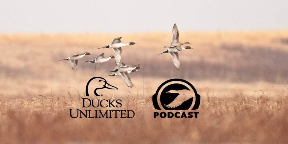 McNair featured on Ducks Unlimited Podcast