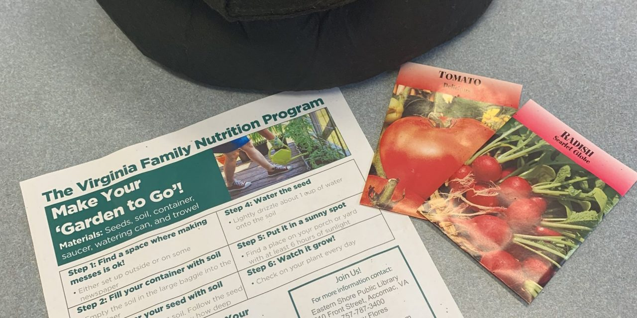 'Garden to Go' offered at Northampton Free Library